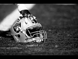 Oakland Raiders 2013-2014 odds