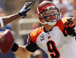 Bengals are Leading the NFL Betting Division in the AFC North